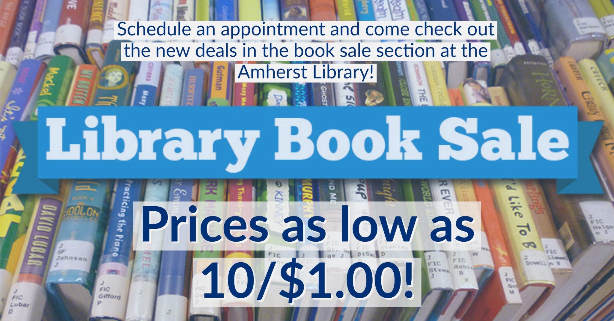 Library Book Sale. Schedule an appointment and come check out the new deals in the book sale section at the Amherst Library! Prices as low as 10 for $1.00!
